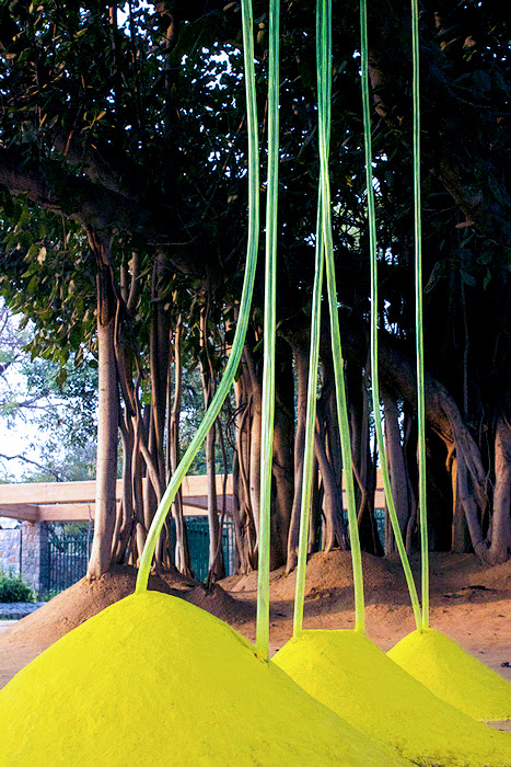 Lucia-Moure-Banyan-tree1
